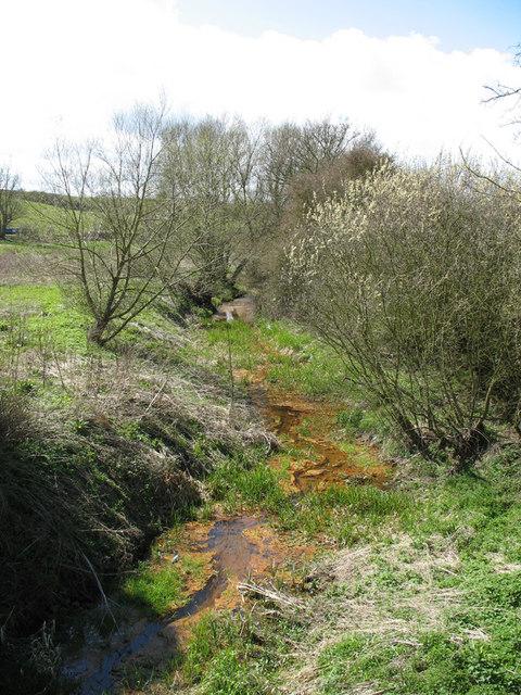 River Ouzel