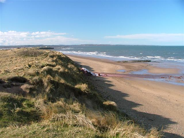 The Beach at Beacon Hill