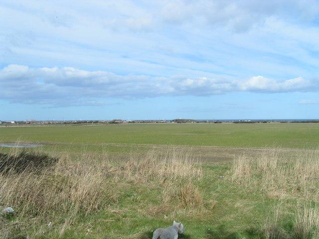 Agricultural land