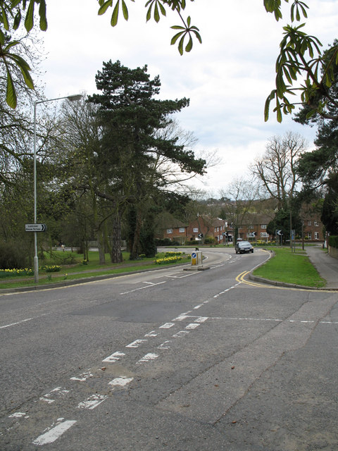 Darkes Lane