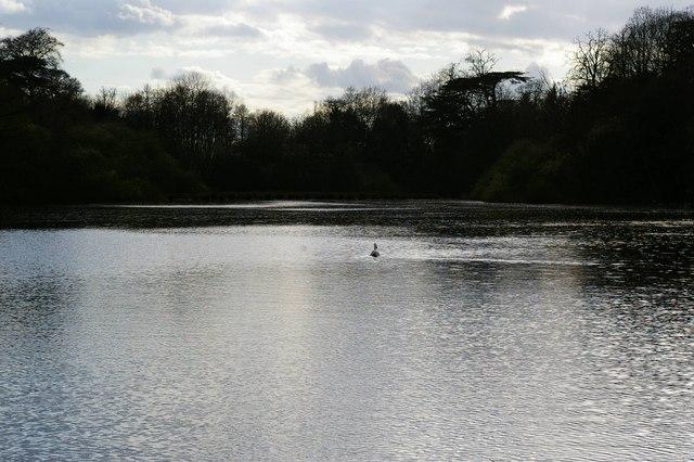 Lake near Birch