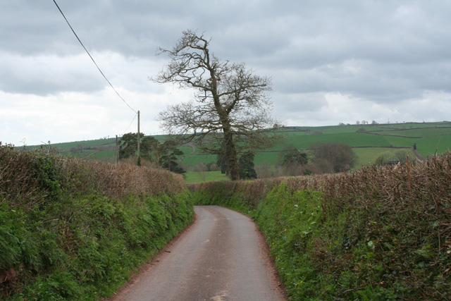 Bathealton: lane to Manworthy Cross
