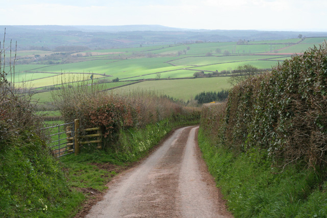 Bathealton: Bickling's Close Lane