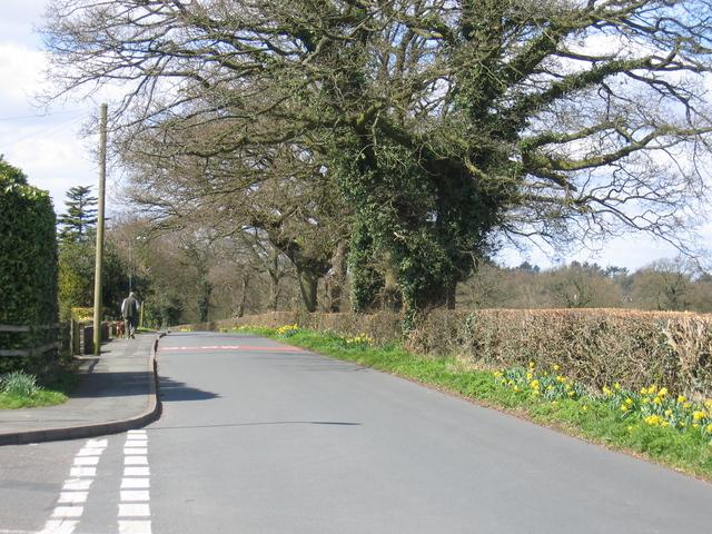 Gorsey Lane, Wythall