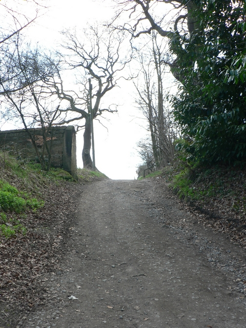 Track to Stub House Farm