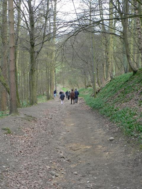 Downhill path, Stub House Plantation