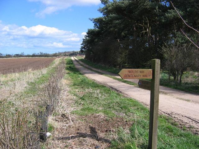 Potter Brompton - Track