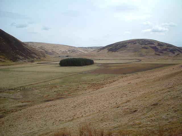 Across Midlock Water towards Harecleuch
