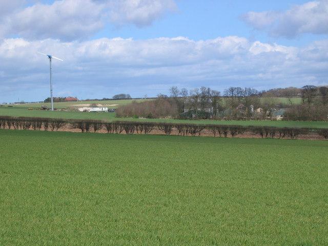 Dotterel Cottage Farm