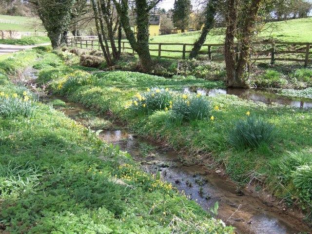 Spring, Pool & Stream : Gagingwell