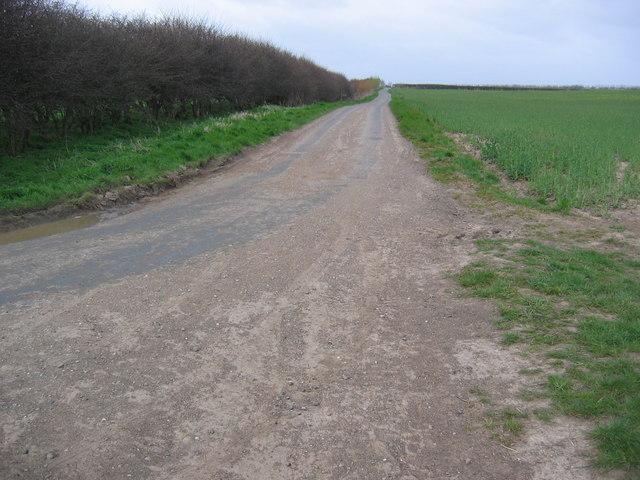 Lane North of Ulrome