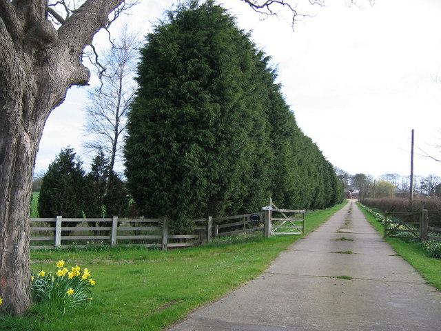 Ulrome Grange