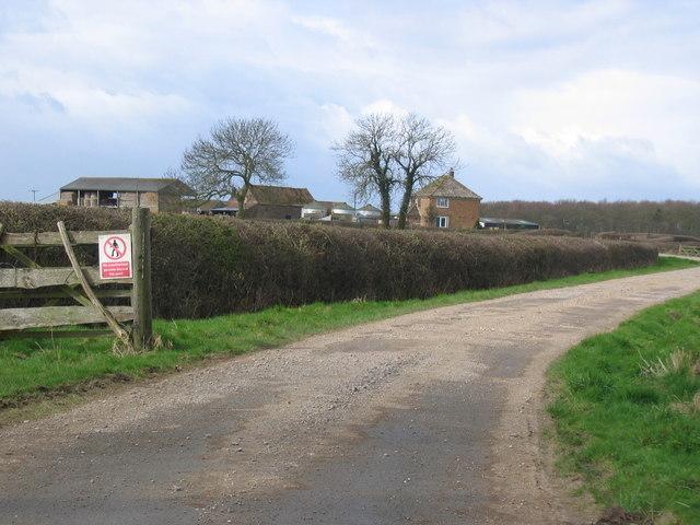 Turtle Hill Farm