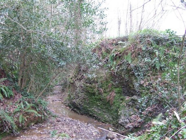 Crooklake Brook