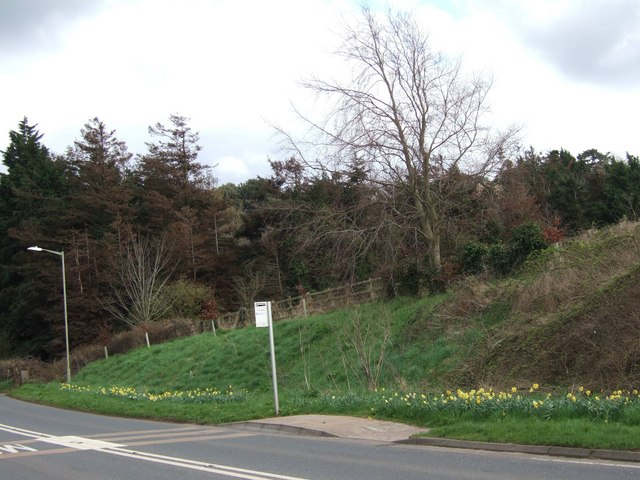 Bus stop on A377 and wood/arboretum beyond.