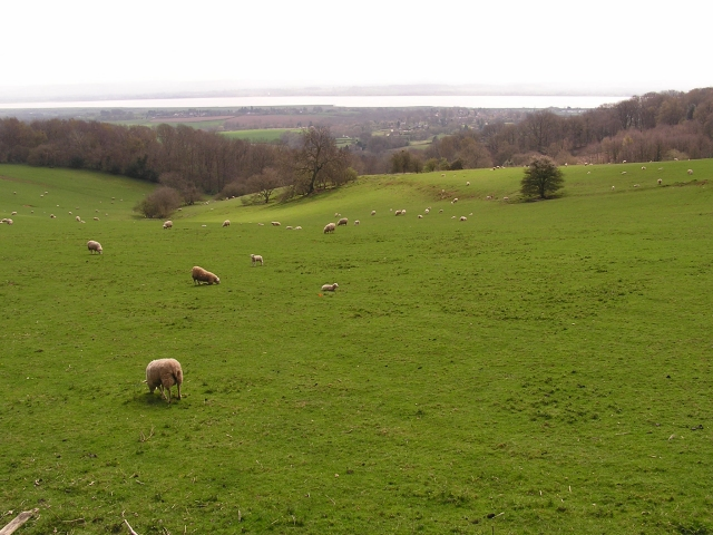 Towards the River Severn