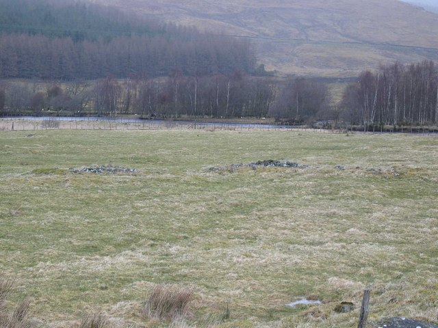 Sheep Grazings in Glen Moriston