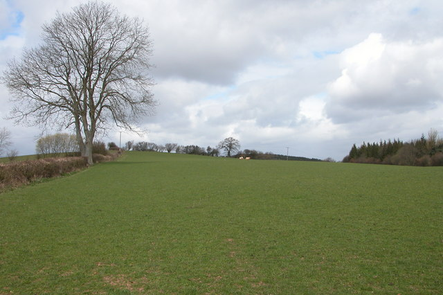 Bridleway across a field near Greenway Farm