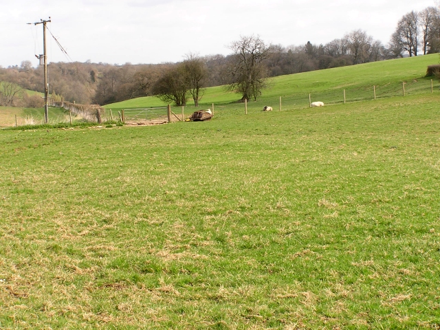 Farmland nr Hewelsfield