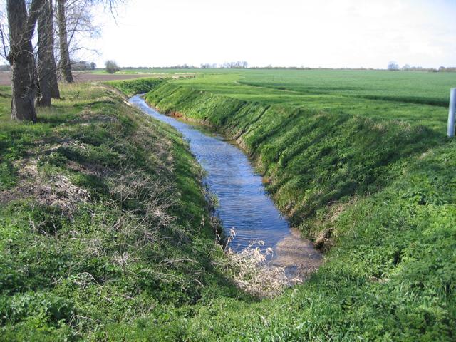 Cat's Water drain, Thorney-Newborough, Peterborough