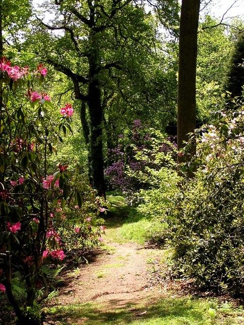 Lydney Park Gardens