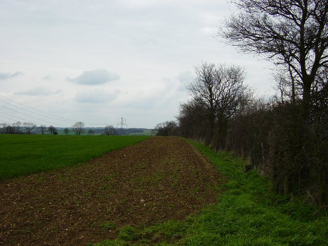 Arable Land and pylons, Hill Green