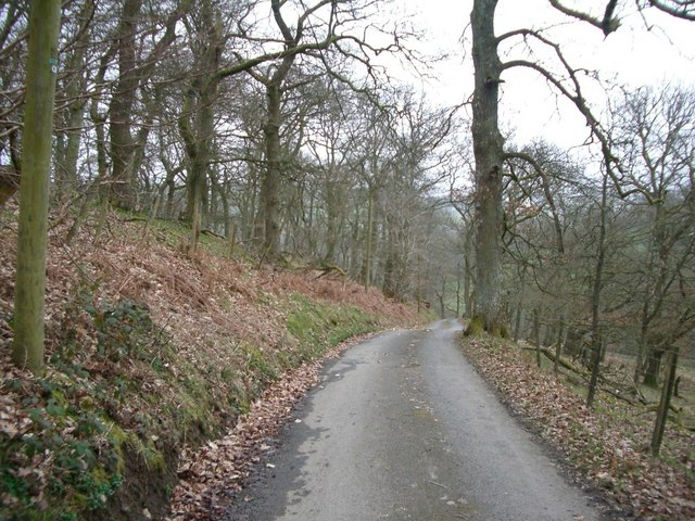 The lane leading down to Llananno