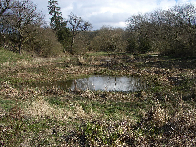 Boggy patch near Cordon