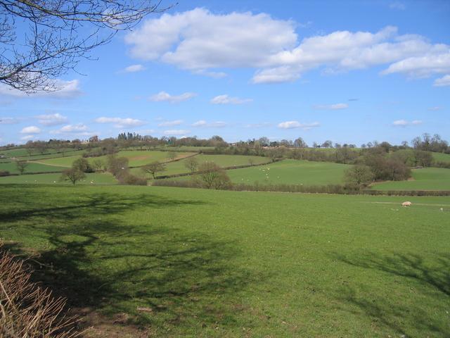 View of Weatheroak Hill