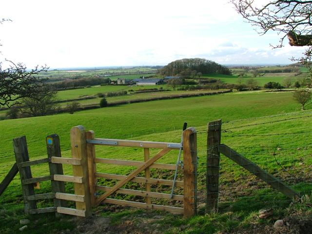 Fields Surrounding Thimbleby Grange