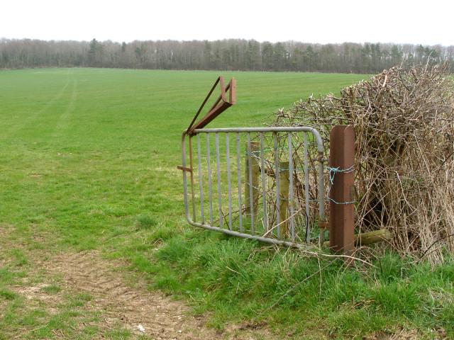 Field near Lower Skippet Farm