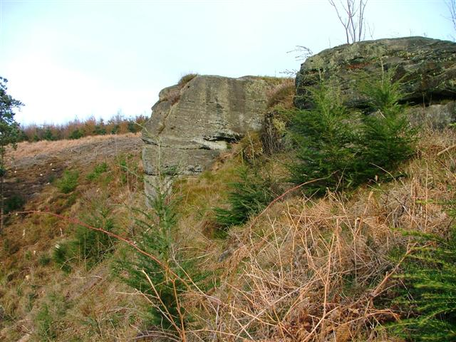 Rock Outcrop, Thimbleby Bank