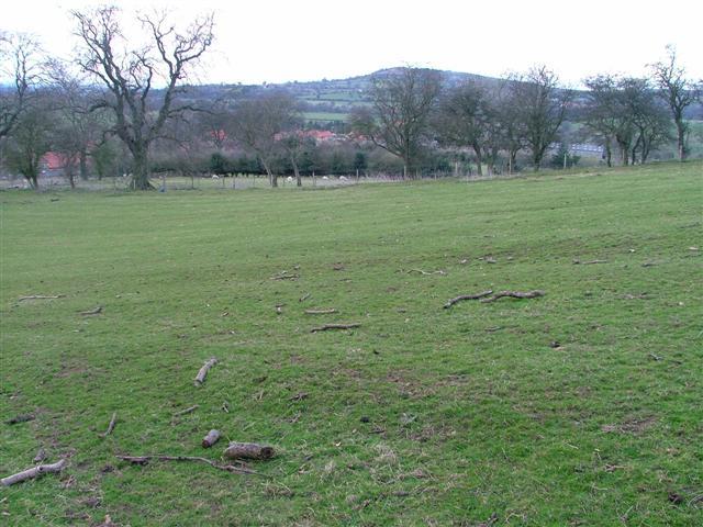Fields Off Sandpit Lane