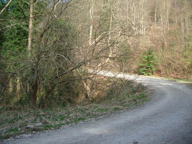 Hairpin bend on the Bury Ditches cycle trail