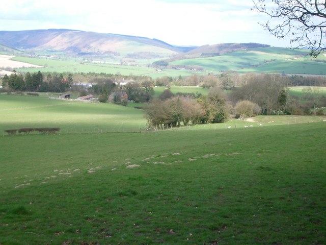 Fields near Lower Down