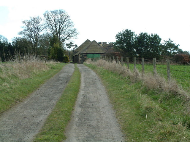 The road to Muirhead Farm