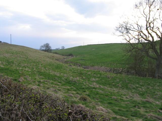 Stream and fields