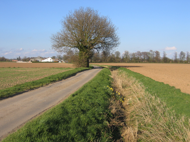 Hill Lane, Kirton, Lincs