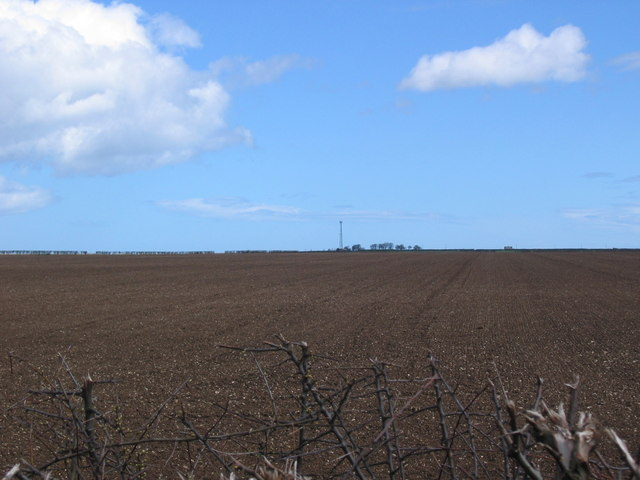 A Ploughed Grid Square
