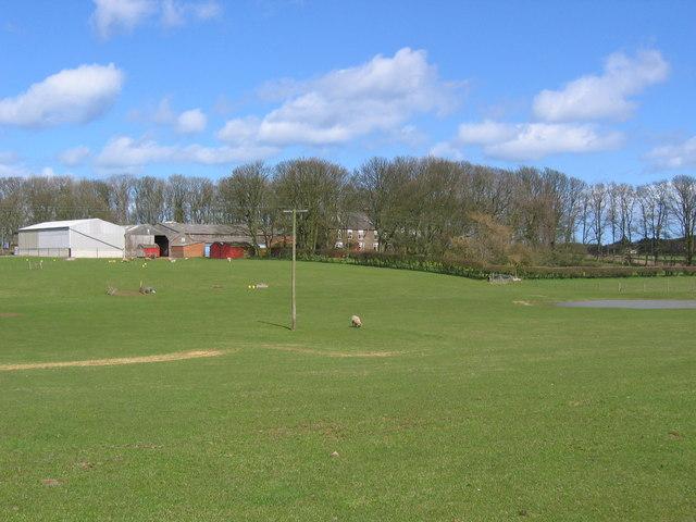 North Dale Farm