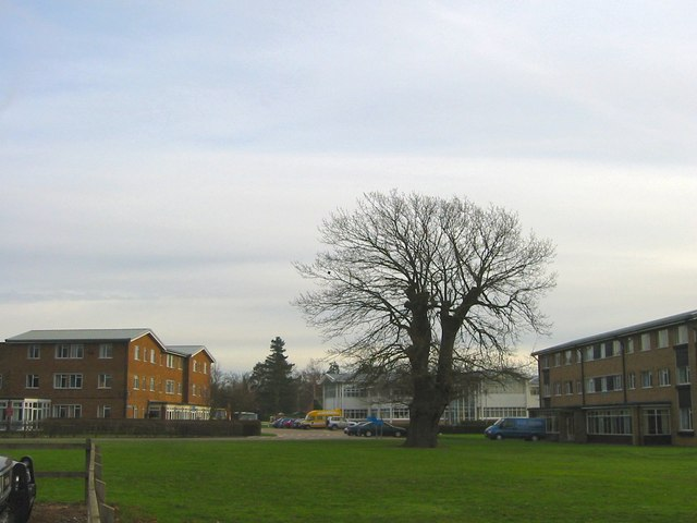 Wymondham College in the evening