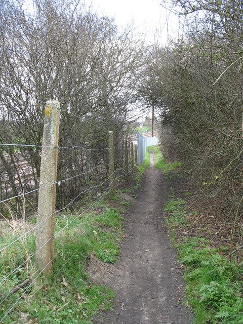 Well Trodden Path
