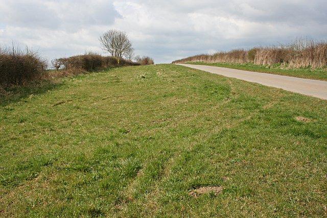 Narrow Road, Wide Verge