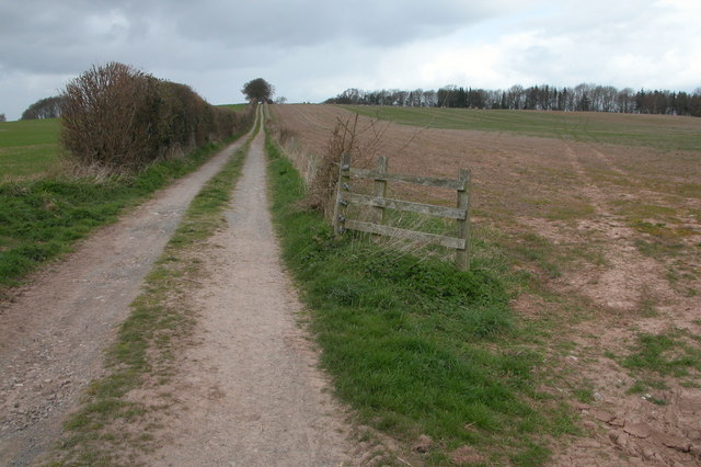 Track to Lyonshall Barn