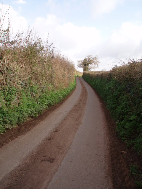 Lane near Ash Priors