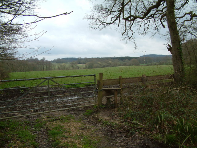 Farmland near Ashridge Copse