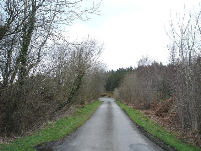 Minor road at Penmynydd