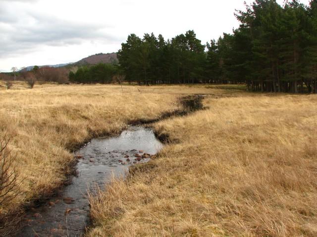 Burn draining Loch Monaghan