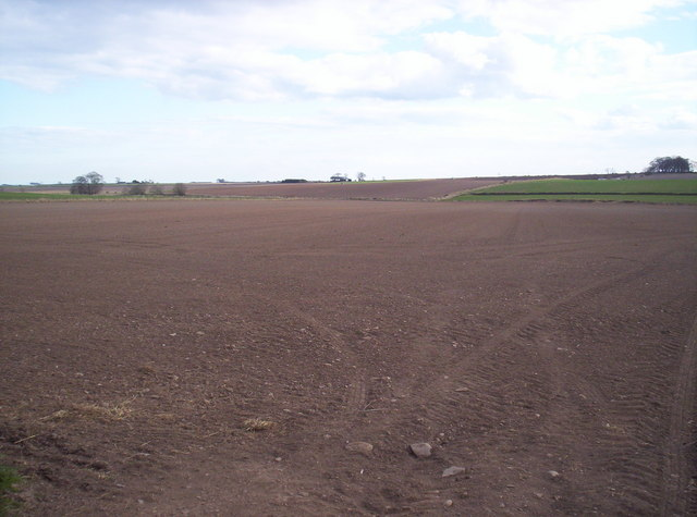 Fields Looking South-East from Greystone