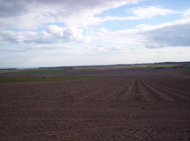 Fields Looking South from near Mains of Carmyllie